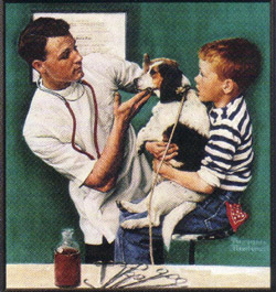 Vet, dog and boy Sunnyside Pet Healthcare Center